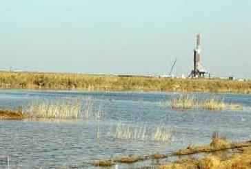 صنعت نفت، حامی بقای هورالعظیم