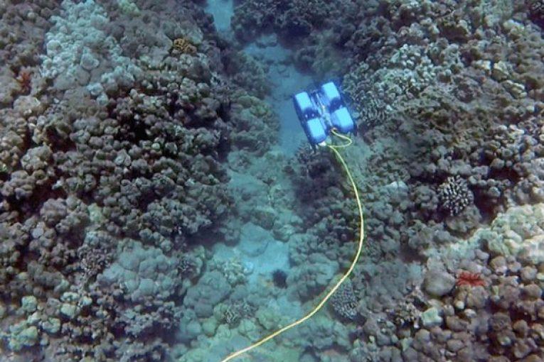روبات روبات غواص ساخته شد offshore451 765x510