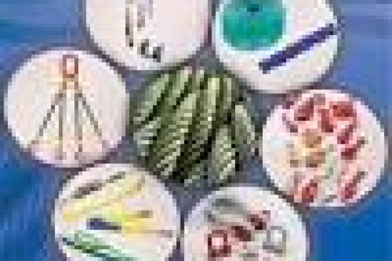 سیم بکسل انواع سیم بکسل، چرثقیل، پولیفت download 1 765x510