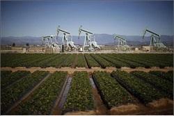 offshore دکلهای حفاری نفت در آمریکا ادامه رشد آمار دکلهای حفاری نفت در آمریکا offshore