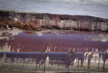فناوری پاکسازی خاکهای آلوده به نفت در کشور توسعه می یابد