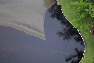 پاکسازی آلودگیهای نفتی با استفاده از باکتریهای بومی خاک